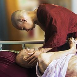 Palliative Therapien